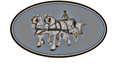 Snailriver Horse Drawn Carriage Co: carriage company in East Anglia